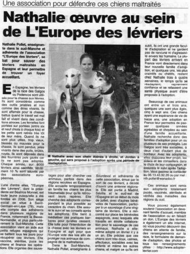 une association pour défendre chiens maltraités