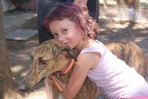 Tara, lévrier galga de 4 ans